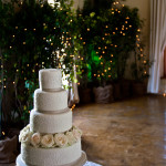 Wedding at Diemersfontein  with Liz Puccini Creations