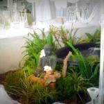 Asian themed wedding at 12 Apostles Hotel